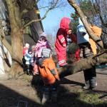 Balancieren auf dem Baum